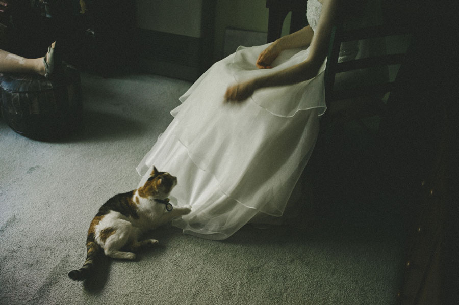 Cat playing with the wedding dress