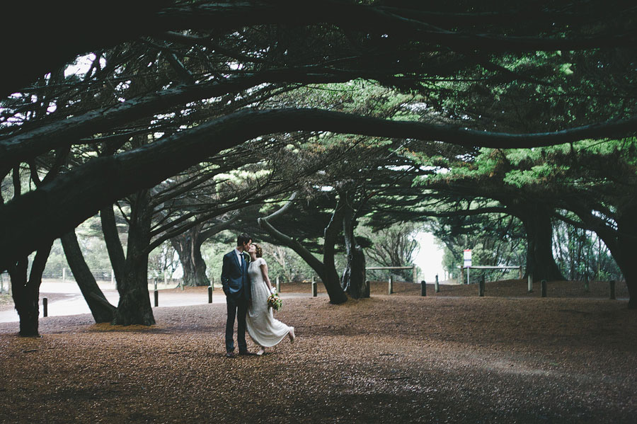 Wedding couple kissing under a giant tree - Lorne wedding photographer
