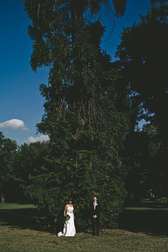 Melbourne Egyptian Wedding Tall tree Fitzroy Garden