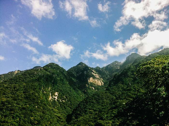 Sunny mountain photographer, Yakushima