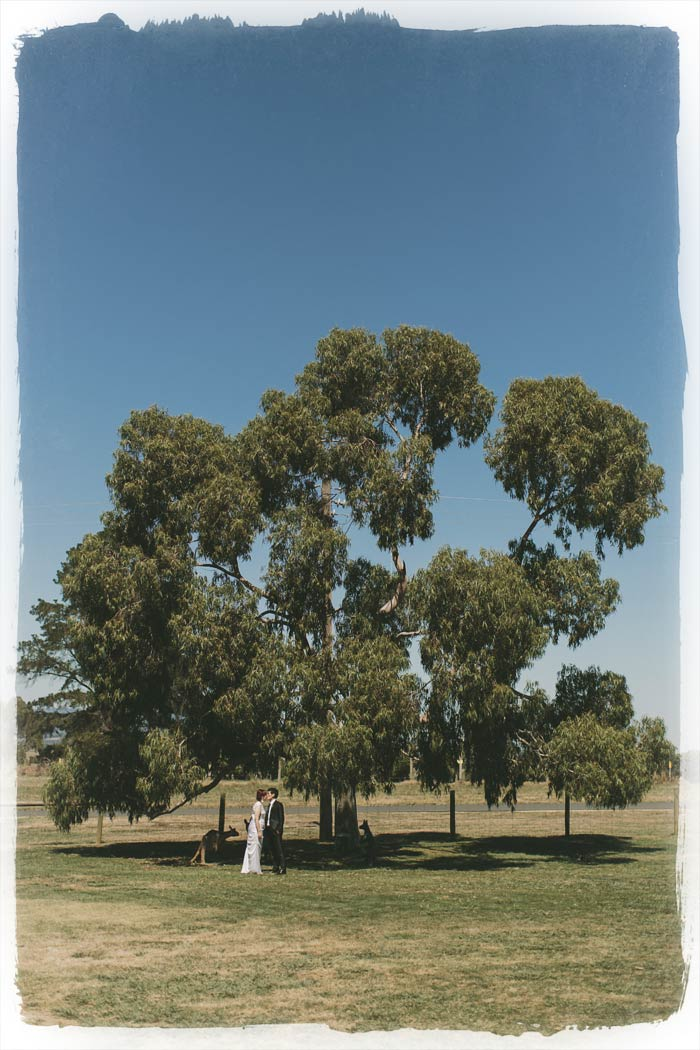 Yarra Glen Wedding Photographer at Balgowine Estate