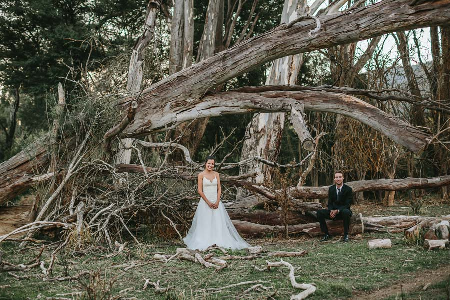 Dead trees Wedding outback couple photographer