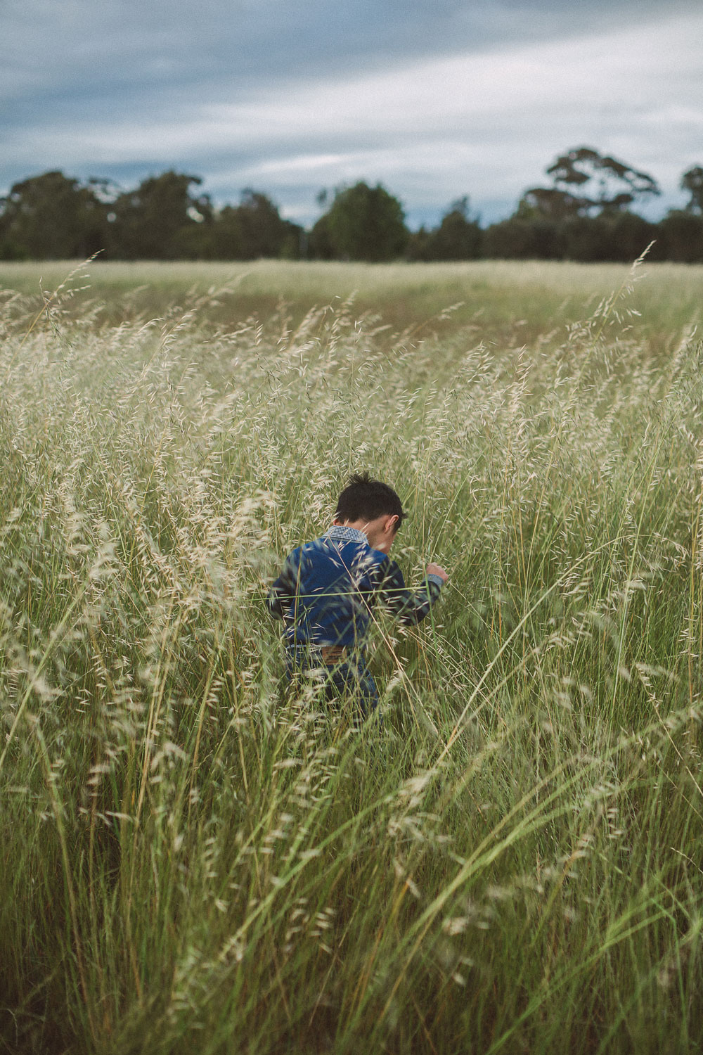 Boy in field of straw Royal Park Parkville