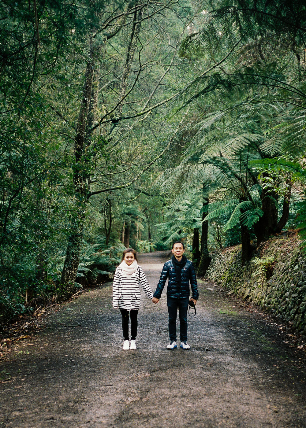 Mount Dandenong Pre Wedding Photographer