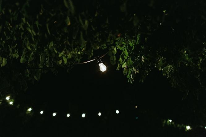 mildura-backyard-wedding