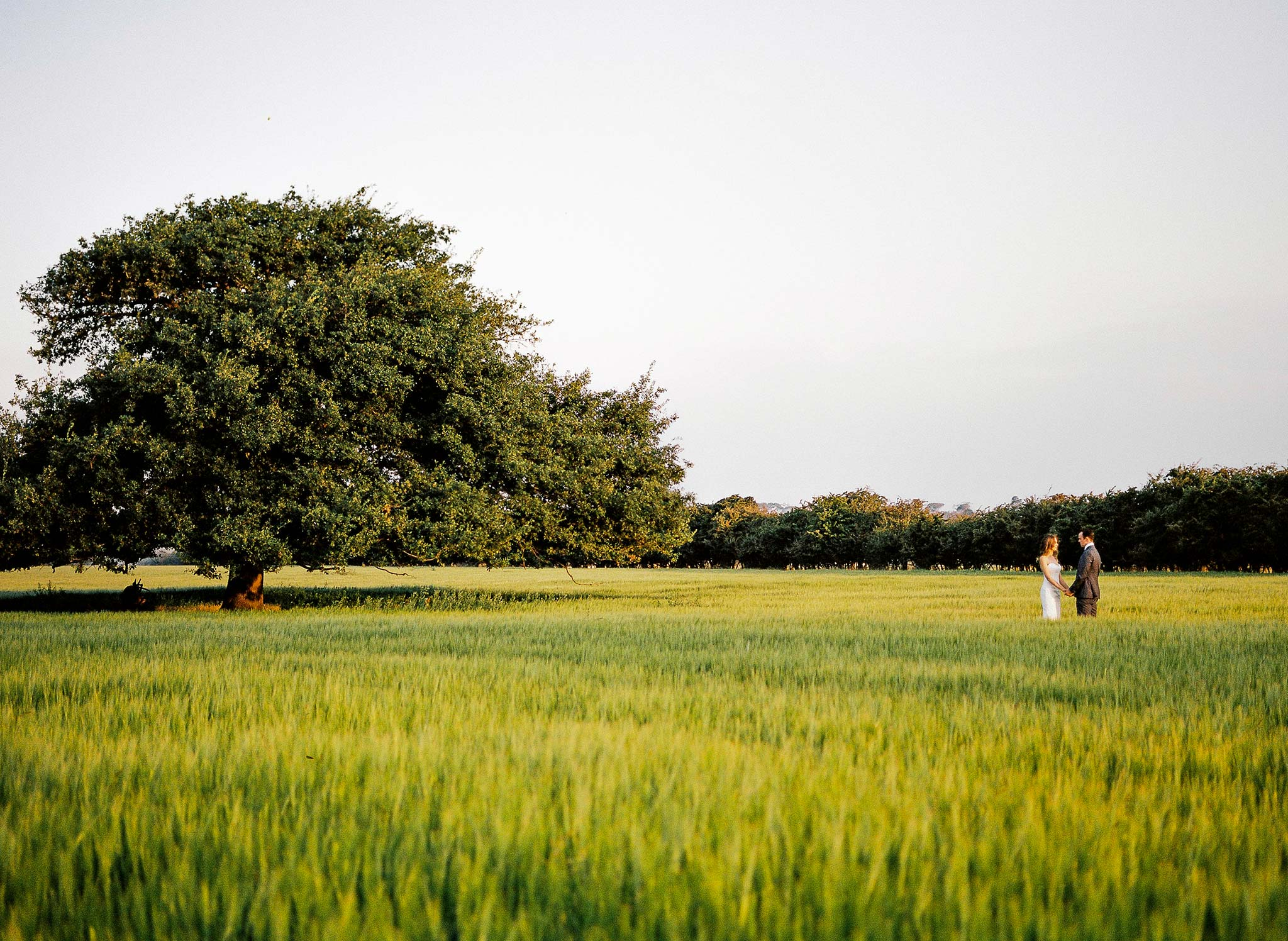 Launceston-Brickendon-barn-Wedding-Photographer-bride-groom-portrait-tree