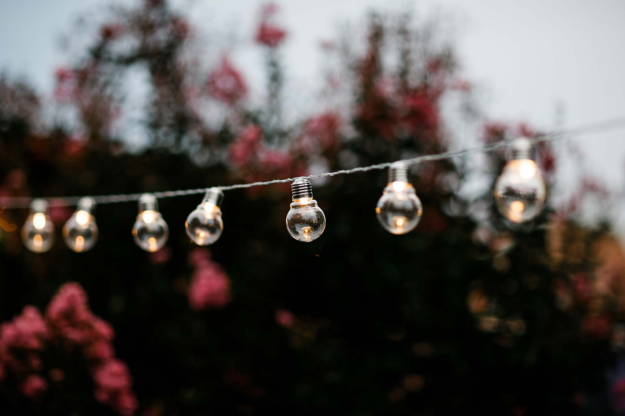 Strathmore-Melbourne-Backyard-Wedding-reception-lighting