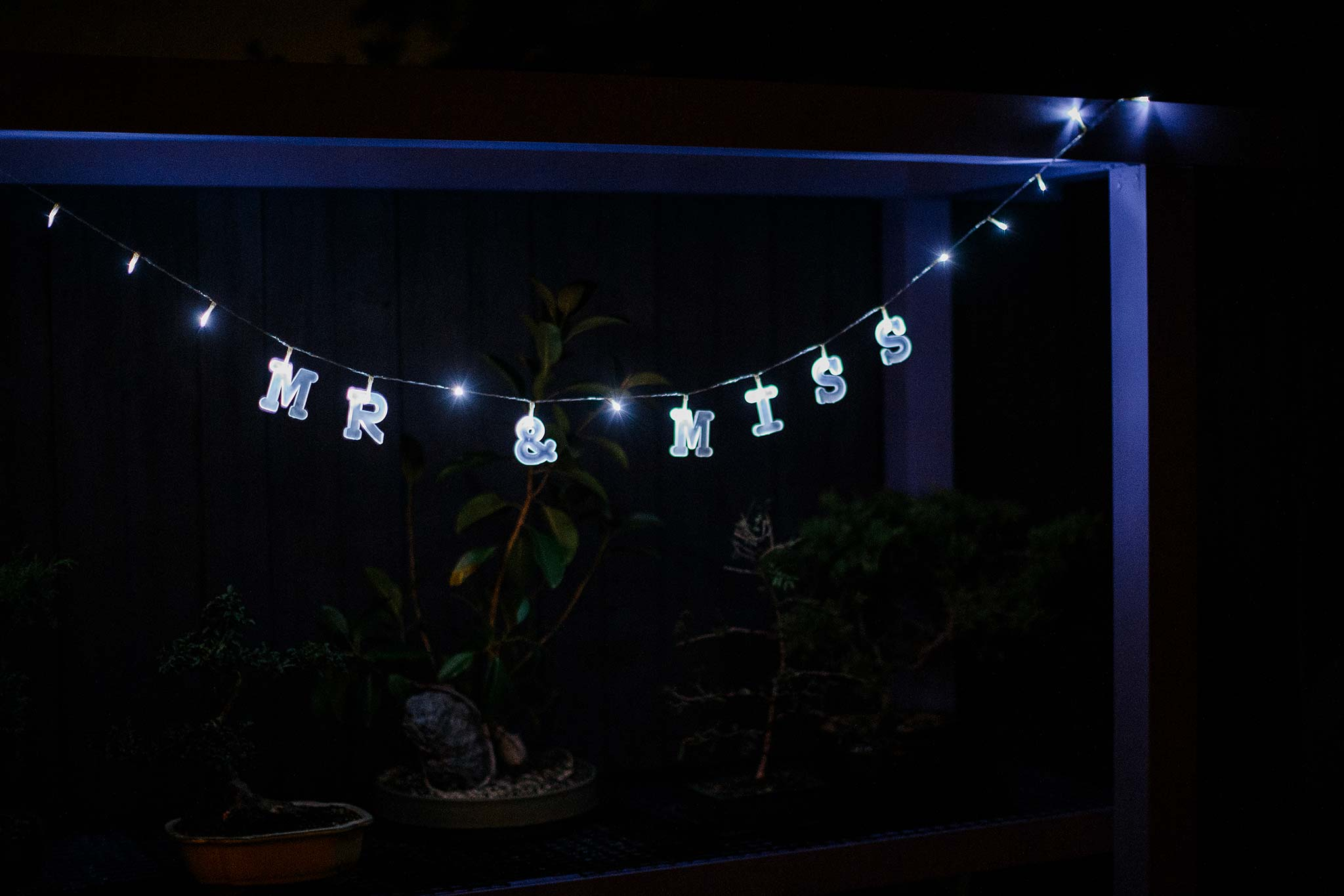 Strathmore-Melbourne-Backyard-Wedding-reception-light-decoration-mr-mrs