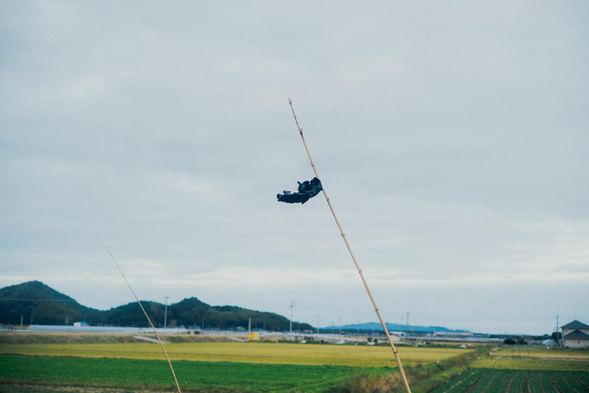 leica-mp-240-photographer-japan-fukuoka-field