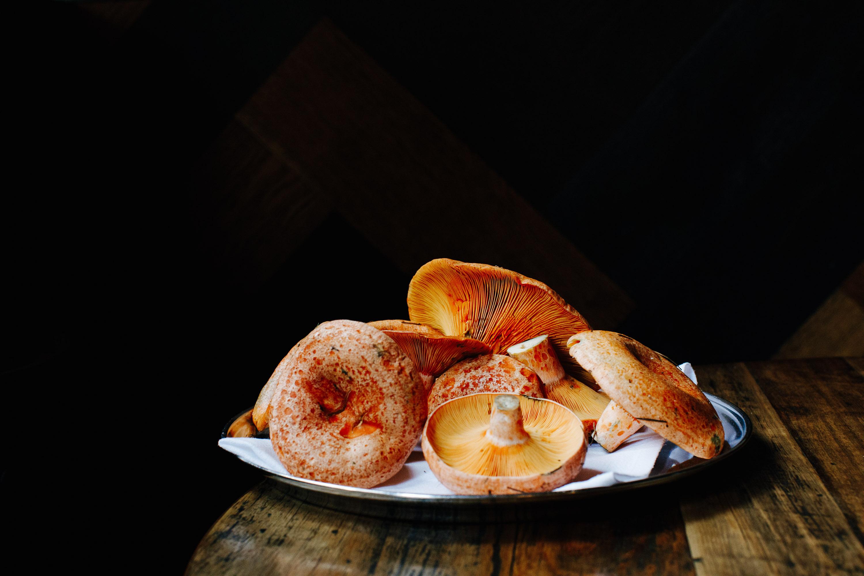 canon-5d-mark-iv-review-melbourne-food-photographer-cumulus-pine-mushroom