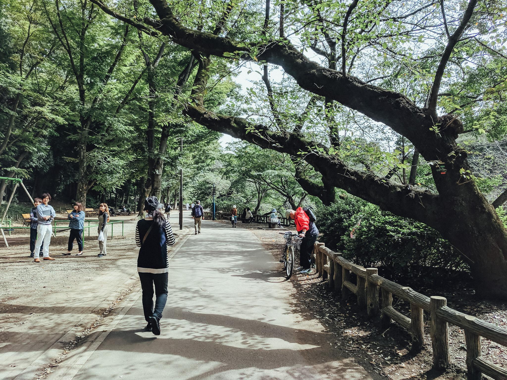 tokyo-travel-photographer-yoyogi-koen-kichijoji