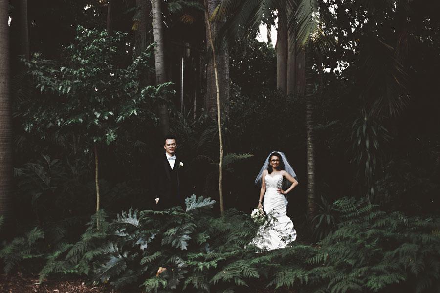 Melbourne wedding portrait at the Royal Botanic Gardens