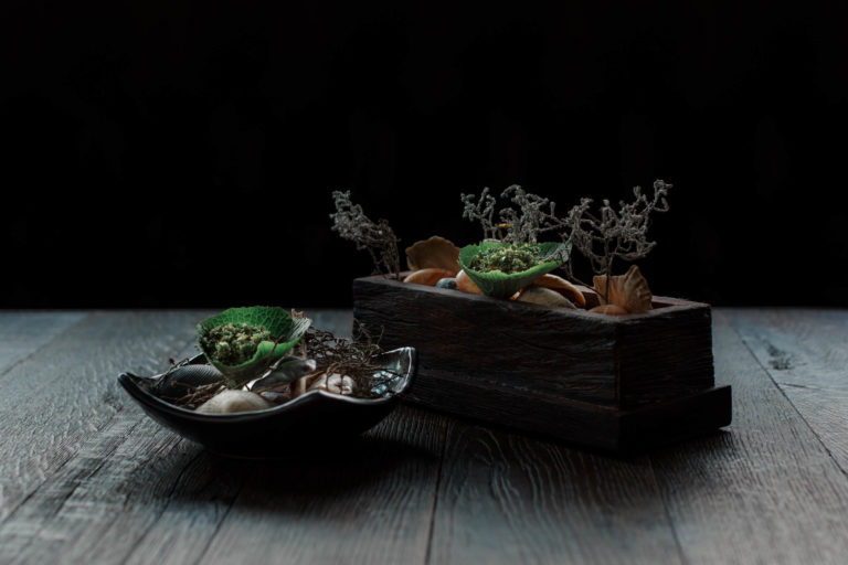 estelle-scott-pickett-melbourne-food-photography-bonsai
