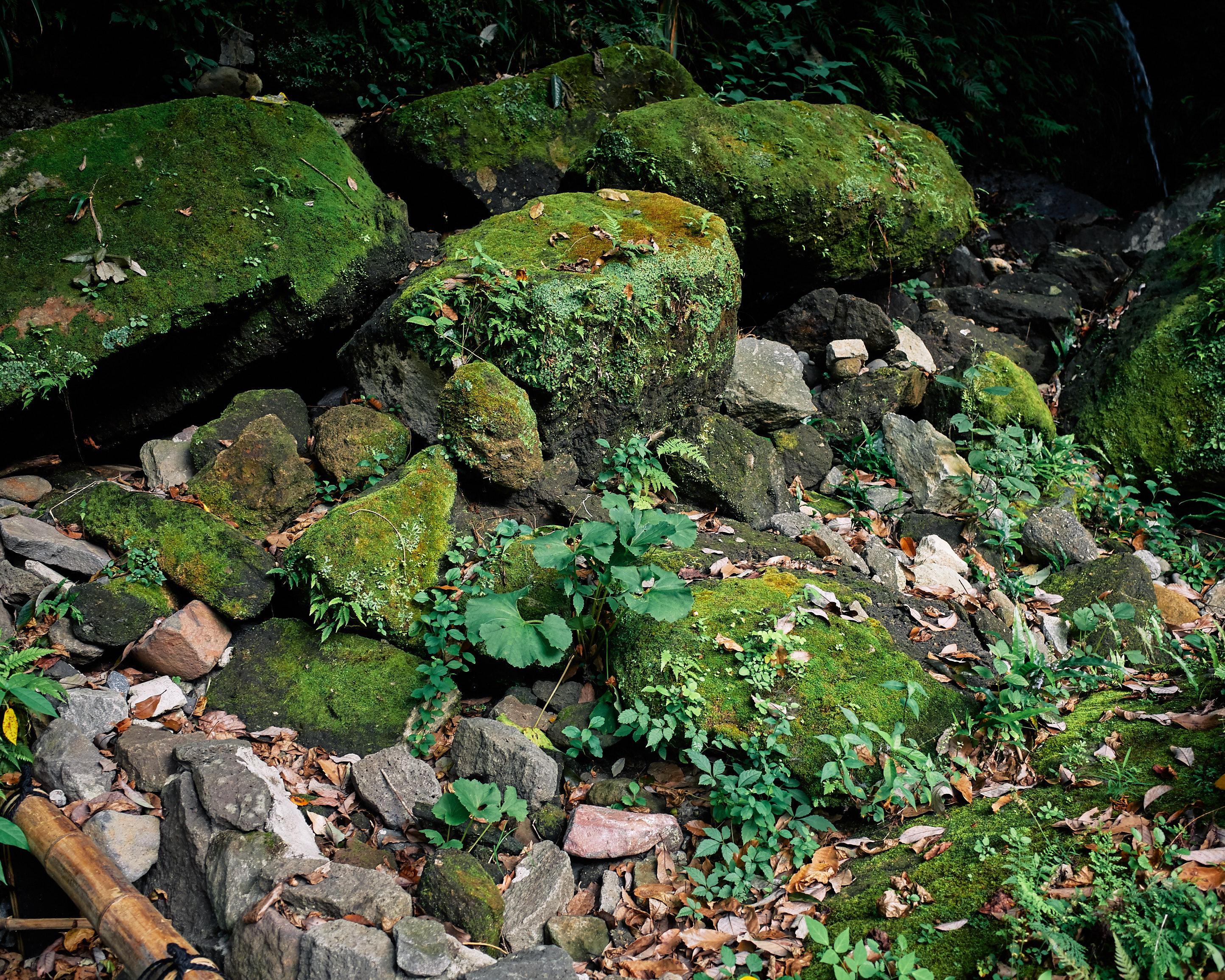 japan travel photographer kagoshima kirishima onsen stones green