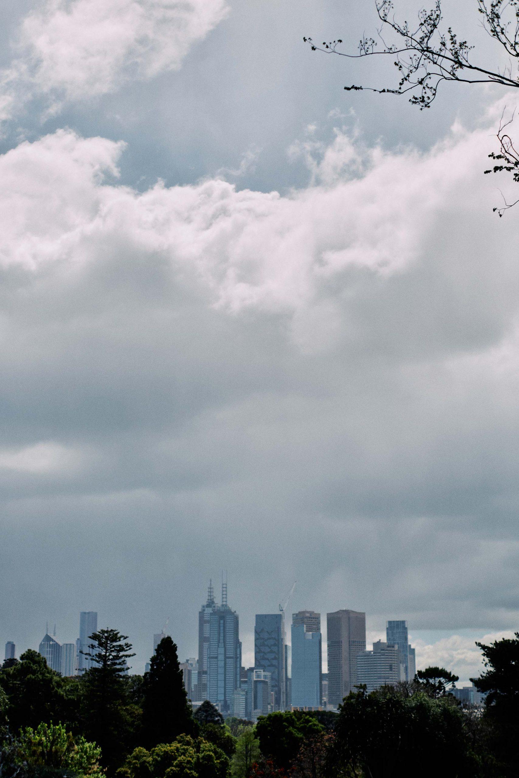 Melbourne Royal Botanical Garden Wedding Ceremony Gloomy Weather