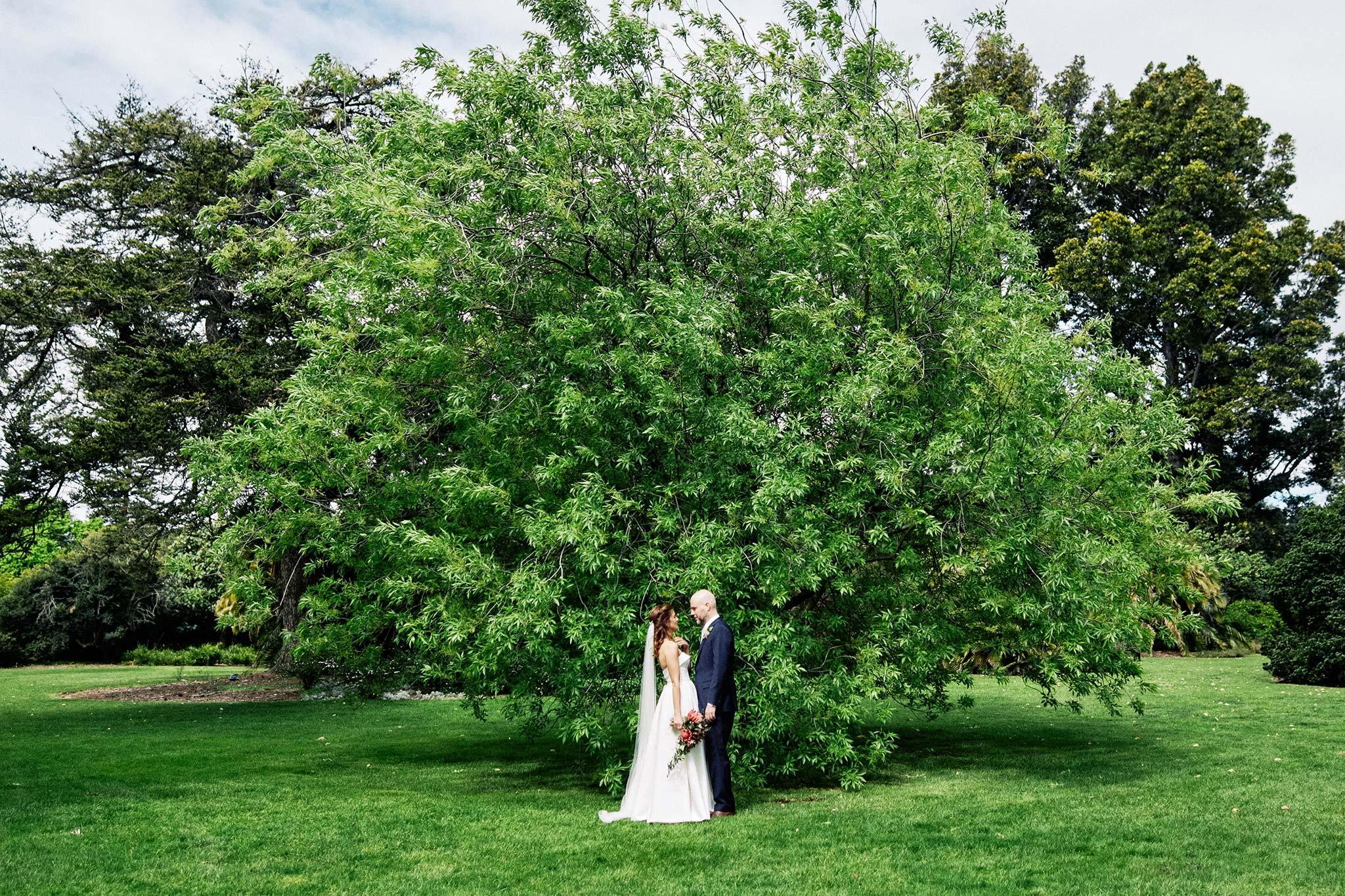 Melbourne Royal Botanical Garden Wedding Ceremony Portrait bride groom tree