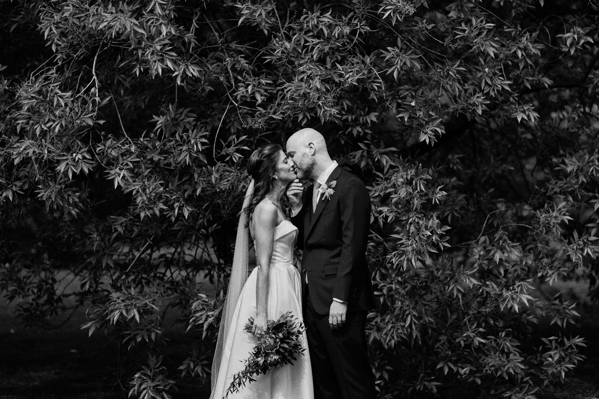 Melbourne Royal Botanical Garden Wedding Ceremony Portrait bride groom tree kiss
